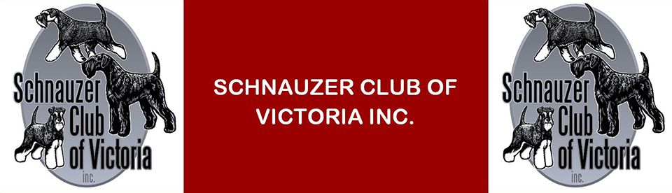 Schnauzer Club of Victoria Inc